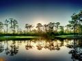 Kilmarlic Golf Course Hole #08 Green